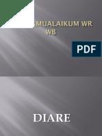 Presentation Diare