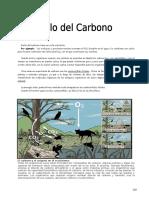 IV Bim - 1er. Año - Bio - Guía 4 - Ciclo Del Carbono II