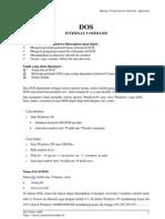 Modul 1 - Dos Internal Command