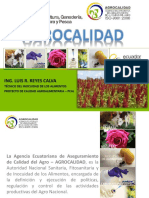BPA_L_R_ Plantas Medicinales y Aromáticas _Final