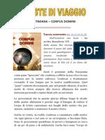 provviste_corpus_b_2018.doc