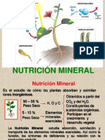 Teorico_-_Nutricion_Mineral_2018