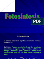 Teorico Practico - Factores Que Afectan La Fotosintesis-2018
