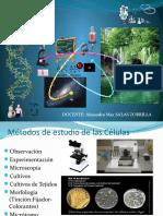 Mecanismos Genéticos Moleculares de La Herencia
