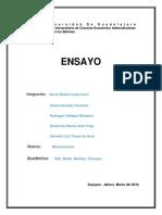 Ensayo Micro