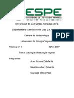 Grupo5 Citologia e Histologia  Marquez
