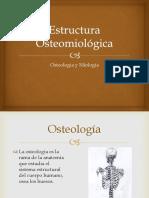 Estructura Osteomiológica