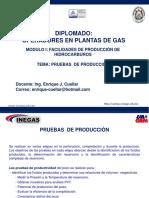 308427683-Pruebas-de-Produccion.pdf