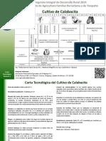 CALABACITA.pdf