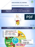 2016--digestion---absorcion.pdf