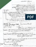 apuntes de penal 2 cabrera .pdf