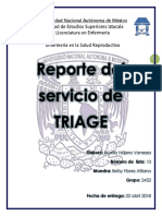 Reporte Triage