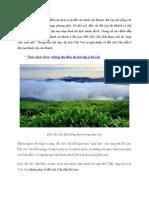 Giới thiệu về Đồi Chè Cầu Đất ở Đà Lạt