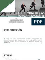 Tema Ciclo de Vida de Las Organizaciones