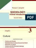 Ch 3- Culture