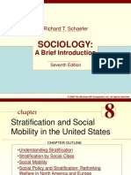 Ch 8- Stratification & Social Mobility in Us