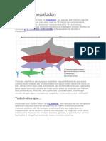 Tubarão Megalodon