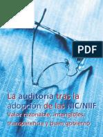 audotoria NIIF.pdf