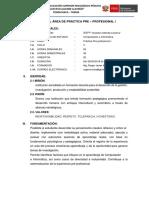 Silabo Practica Preprofesional I Ciclo v