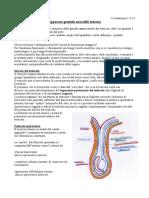 23.Anatomia.5-5-14