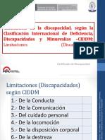 04 Calificacion discapacidad