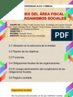 Funciones Del Área Fiscal en Los Organismos Sociales