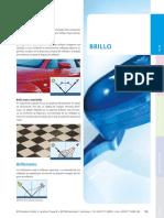 Intro_Brillo.pdf