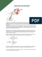 sangre-mecanica-de-fluidos.docx