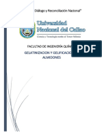informe de gelatinizacion