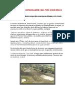 Principales Contaminantes en El Perú Segun Brack