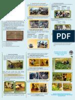 TRÍPTICO Producción de Hortalizas - Para la Agricultura Urbana y Perirurbana de Potosí, Bolivia