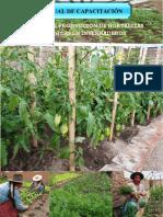 El Manual de Capacitacion - Producción de Hortalizas Ecológicas - Para la Agricultura Urbana y Perirurbana de Potosí, Bolivia