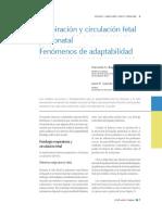 5-15_respiracion_y_circulacion_fetal.pdf