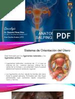 Compendio de Anatomía Patológica de La Glándula Mamaria