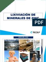 179384652-Lixiviacion-de-Zinc-Sesion-Vi.pdf