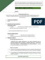 RESUMEN EJECUTIVO FLORIDA.docx