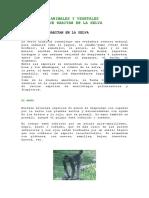 ANIMALES Y VEGETALES EN LA SELVA 1.doc