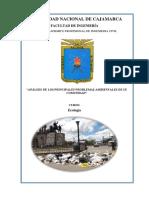 ANÁLISIS DE LOS PRINCIPALES PROBLEMAS AMBIENTALES DE SU COMUNIDAD.docx