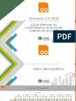 Entrega 2 - Encuesta .CO 2018 (003)