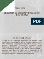 Origen y evolucion del cacao.pptx