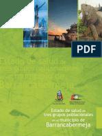 Informe Barranca Completo