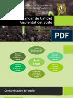 ECA-del-Suelo.pptx