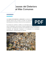 Las 10 Causas Del Deterioro Ambiental Más Comunes