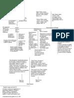 Lapesa Historia de la lengua Cap 11 esquema