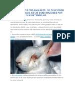 Experimentos Con Animales