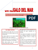 Ud3 Un Regalo Del Mar (Lectura)