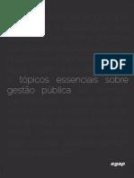 2016-ebook-topicos-essenciais-sobre-gestao-publica.pdf