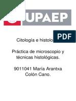 Práctica CORRECTA.docx