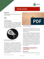 Giardia lamblia 2016.pdf