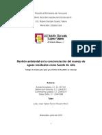 TESIS GRADO, AGUAS SERVIDAS.doc